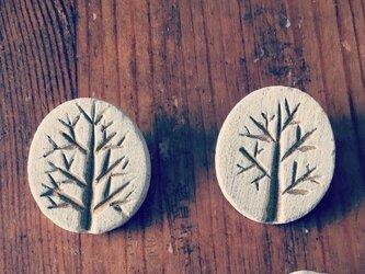 【陶土】樹 みき ブローチ 木の画像
