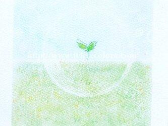 Mariko Hirai シャボン玉アートパステル原画*【はじまりは わたしの中に】の画像