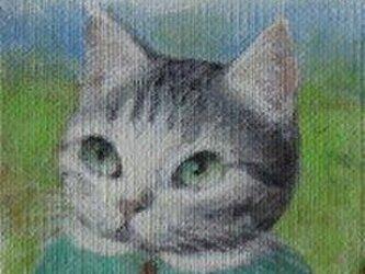 キティ・サバトラ(売約済み)の画像