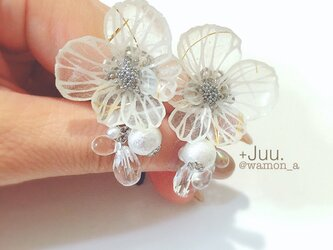 切り絵の花のイヤリング(山荷葉:銀)の画像