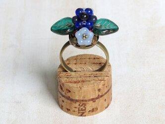 ブルーベリーの指輪 3の画像