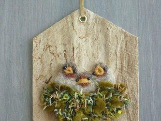 掛けたり送れる小鳥の巣箱カード(ヨーロッパコマドリのひな)の画像