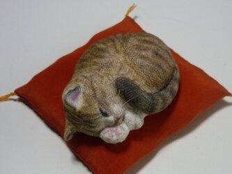 アンモニャイト キジトラ猫さん1 絹の座布団付の画像