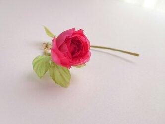 rose no.1 (片耳用ピアス)の画像
