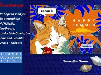 <暑中お見舞い>湘南Catsの夏 選べる4枚セット 04  ほんわか茶トラの画像