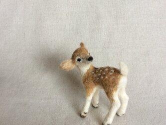 ウールの子鹿  ( 再出品 )の画像