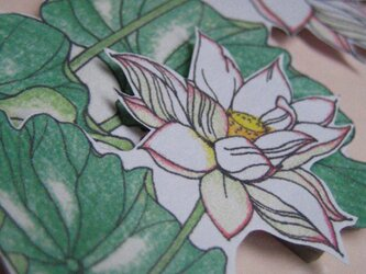 【展示品】フリーメッセージカード 【夏白色 蓮のはな】の画像