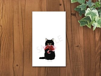 猫 クロちゃんメッセージカードの画像