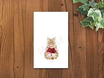 猫 茶トラちゃんメッセージカードの画像