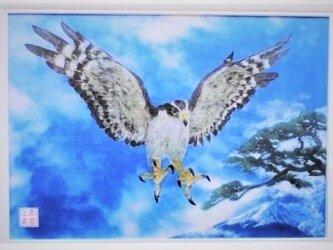 創造の鷹~飛翔~の画像