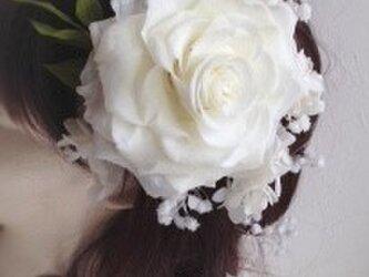 Bridal head dressプリザーブドフラワー白のローズメリアとアジサイ、カスミソウの画像