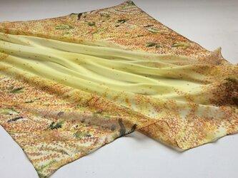 シルクスカーフ「mimosa」の画像