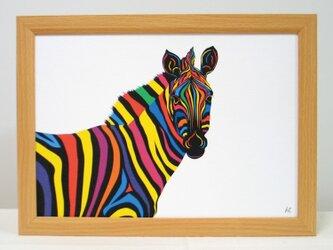 絵画 イラスト アート シマウマ しまうま ゼブラ A4-k02の画像