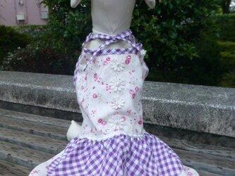 花柄チェックワンコ服ワンピース(小型犬L)の画像