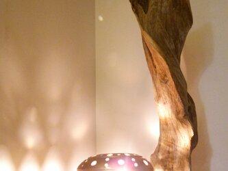 流木卓上ランプFの画像