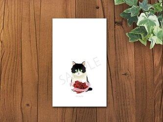 猫 白黒ちゃんメッセージカードの画像