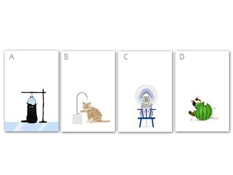 猫 ポストカード*夏*4枚セット *冷やしてますよ〜♪*の画像