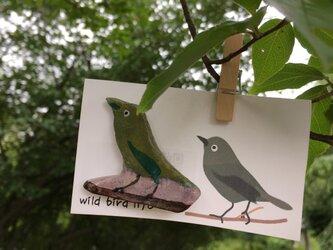 wild bird life ブローチ メジロの画像