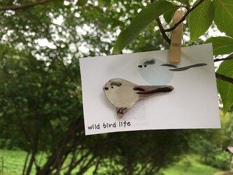 wild bird life ブローチ エナガの画像