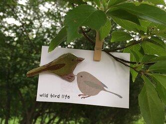 wild bird life ブローチ ウグイスの画像