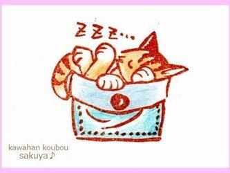 お休みポケット猫の画像