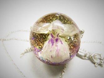 羽蝶蘭のネックレスの画像