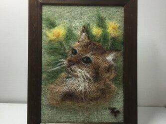 羊毛フェルトの猫の絵(アビシニアン)の画像
