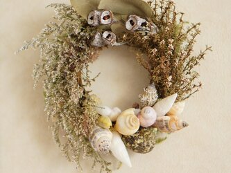 shell wreath  の画像