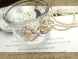 petal aの画像