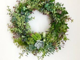 Green wreath Ⅱの画像