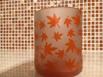 紅葉いっぱいグラスの画像