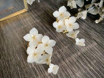 特別な日の白花ピアスの画像