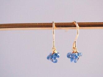blue mini earringsの画像