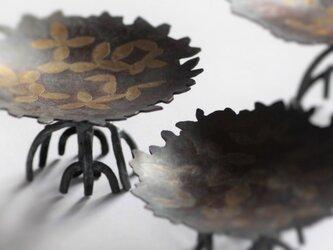 ヒルギのミニ皿の画像