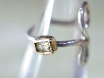 リング<Rosarium>ローズカット・ダイヤモンドの画像