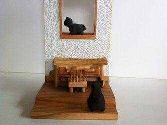 窓辺のネコの画像