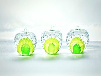 ガラスのリンゴ 「緑」の画像