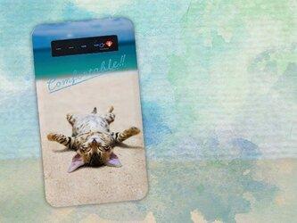 【モバイルバッテリー】海岸でひなたぼっこをする猫 for iPhone&Androidの画像