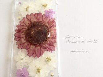 amethyst violet*ガーベラ【iPhone6/6s】の画像