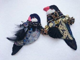 IRODORI AZ 文鳥各種の画像
