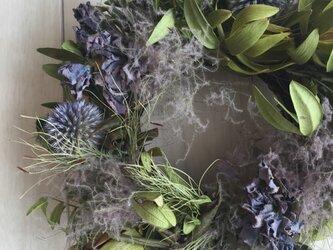 瑠璃玉アザミ 夏のリース 約15㎝の画像