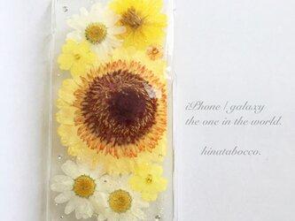 黄色い花束*ガーベラ【iPhone6/6s】の画像