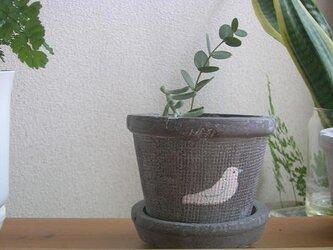 とりの植木鉢の画像