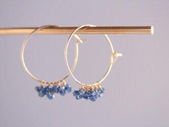blue trim earringsの画像