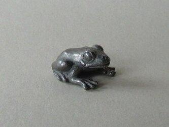 蛙(ミニ)の画像