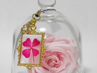 クリアクローバー®︎ストラップ【四つ葉チャーム付】ピンクの画像