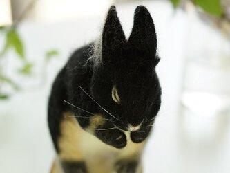 おいのりウサギ 黒の画像