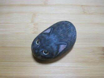 石猫  「隠れ美猫 SABI」の画像