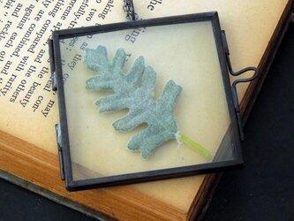 植物標本ペンダント//アンティークアイアンフレーム(ボタニカル//シロタエギク)の画像