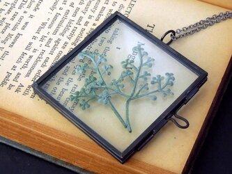植物標本ペンダント//アンティークアイアンフレーム(ボタニカル//モスプレー)の画像